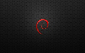 Debian_Red_Metal_Hex_by_monkeymagico
